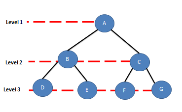 Binary Tree in Data Structure - seekyourcareer in